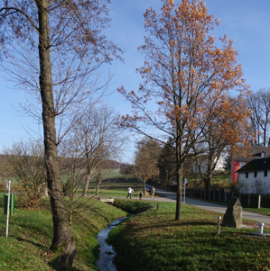 tannbach.jpg